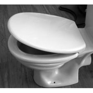 Duraplus,Soft Close Toilet Seat,White,MV060ST