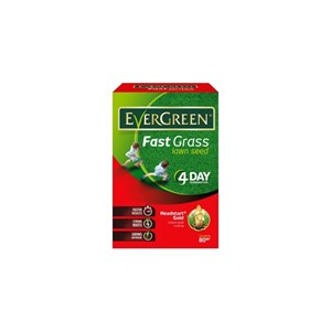 Evergreen Fast Grass Seed 600gm